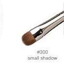 brush300